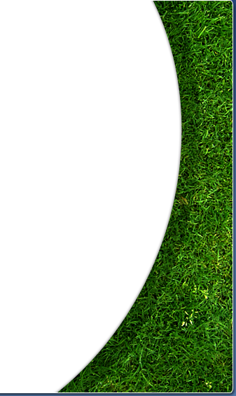 grass inlay